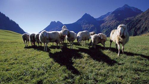 Ötztaler Berge